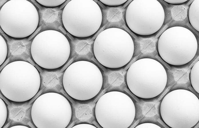 Українські птахофабрики на чверть скоротили виробництво яєць